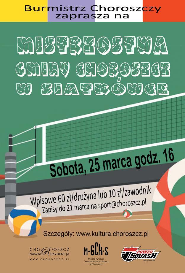 siatkowka 2017 plakat